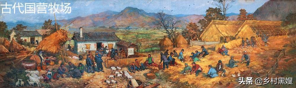 羊在古代有什么作用?什么時候被馴化?一口氣搞懂羊的前世今生